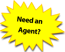 Need a real estate agent or realtor in Saint Petersburg
